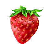 Realistic strawberry with water drops Stock Photos