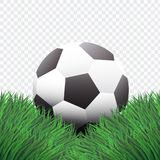 Realistic Style,Classic Football or Soccer on Green Grass design,isolated background,. Realistic Style,Classic Football or Soccer on Green Grass design,isolated Royalty Free Stock Photo
