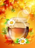 Realistic sunny autumn light, bright maple leaves, a jar of honey in the  background. Colorful and high-quality template.. Realistic sunny autumn light, bright Stock Photo