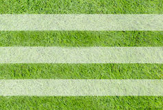 A realistic textured grass football / soccer field Stock Images
