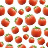 Realistic Tomato Seamless Pattern. Vector Stock Photos
