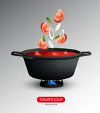 Realistic Tomato Soup Cooking Concept Royalty Free Stock Image