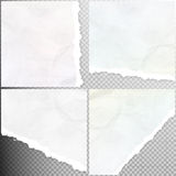 Realistic torn paper. EPS 10 Royalty Free Stock Photos