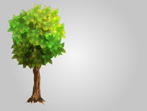 Realistic Tree, Isolated Royalty Free Stock Photography