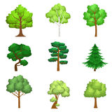 Realistic Trees Set. Of Realistic Design Vector Stickers  On White Background Royalty Free Stock Photo