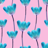 Realistic tulips seamless pattern Royalty Free Stock Images