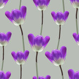 Realistic tulips seamless pattern. Repeating surface pattern with beautiful realistic 3D tulips for all web and print purposes Stock Image