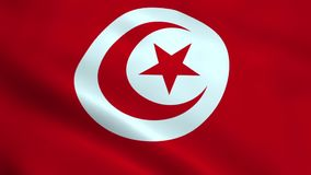 Realistic Tunisia flag stock video