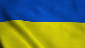 Realistic Ultra-HD flag of the Ukraine waving in the wind. Seamless loop with highly detailed fabric texture stock video footage