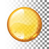 Realistic vector honey drop on transparent background Stock Photos