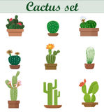 Realistic vector illustration of Cactus set. Elegant Flat style. Exotic floral plant flower. Beautiful pot. Stock Photography