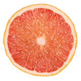 Realistic vector illustration of a grapefruit slice Royalty Free Stock Photography