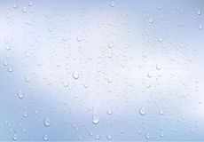 Realistic water droplets on the transparent window. Vector Royalty Free Stock Images