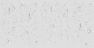 Realistic water drops, vapor bubbles or condensation illustration. Raindrops on transparent background. Realistic water drops, steam, vapor bubbles or vector illustration