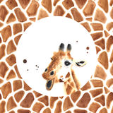 Realistic watercolor giraffe Royalty Free Stock Photography