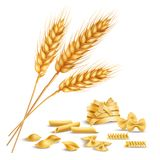 Realistic wheat spikelets and pasta Stock Image