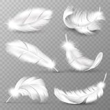 Realistic White Feathers. Birds Plumage, Falling Fluffy Twirled Feather, Flying Angel Wings Feathers. Realistic Isolated Stock Images