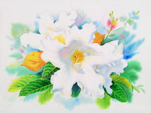 Realistic white flower of easter lily vine and green leaves Stock Images