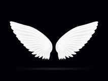 Realistic white wings on a black background.  Royalty Free Stock Images