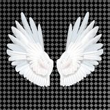 Realistic white wings on transparent background vector illustration
