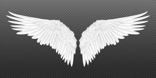 Free Realistic Wings. Pair Of White Isolated Angel Wings With 3D Feathers On Transparent Background. Vector Bird Wings Design Royalty Free Stock Image - 160993296