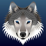 Realistic wolf's face Royalty Free Stock Images