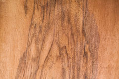 Realistic wood veneer. With interesting growth rings Royalty Free Stock Photo