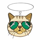 Realistic yellow cat head and sunglasses and thinking balloon. Realistic yellow cat head drawing and thinking balloon and white background Royalty Free Stock Image