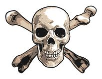 Realistic Illustration of a Human Skull and Crossbones stock illustration
