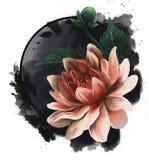 Realistisch beeld van een hand-drawn lotusbloem of dahliabloem stock afbeeldingen