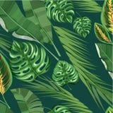 Realistisch Exotisch Tropisch Bloemenpatroon vector illustratie