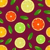 Realistisch Gedetailleerd Citrusvruchtenpatroon Als achtergrond Vector royalty-vrije illustratie