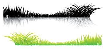 Realistisch gras op een wit Stock Afbeeldingen