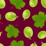 Realistische ausführliche Stachelbeeren 3d mit Grün verlässt nahtlosen Muster-Hintergrund Vektor Stock Abbildung