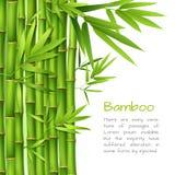 Realistische bamboeachtergrond stock illustratie