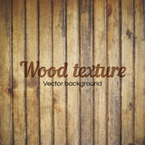 Realistische Beschaffenheit des blassen Holzes Lizenzfreies Stockbild