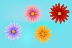 Realistische bloem vectoreps10ndaisy bloem, nchamomile met bloemblaadjes vector illustratie