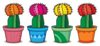Realistische cactus vectorillustratie Stock Afbeelding