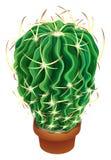 Realistische cactusillustratie Stock Afbeeldingen