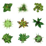 Realistische Gedetailleerde 3d Hoogste Geplaatste Menings Groene Installaties Vector Stock Afbeelding