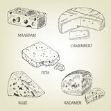 Realistische grafische Käsesammlung Auch im corel abgehobenen Betrag lizenzfreie abbildung