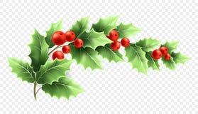 Realistische Illustration der Weihnachtsstechpalmen-Niederlassung Lizenzfreie Abbildung