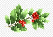 Realistische Illustration des Weihnachtsstechpalmen-Baumasts Stock Abbildung
