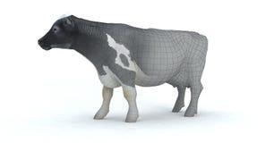 Realistische Kuh 3d Stockfotografie