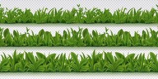 Realistische nahtlose Grasgrenze Frühlingsmuster mit Kräutern des Frühlinges 3D, realistischer Hintergrund des grünen Grases Vekt lizenzfreie abbildung