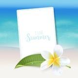 Realistische Overzeese Achtergrond De tropische Achtergrond van het Bloemenstrand Royalty-vrije Stock Foto