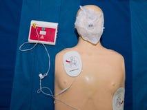 Realistische proef de ledenpoppop van de opleidingssimulator voor medische procedure stock foto's