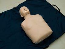 Realistische proef de ledenpoppop van de opleidingssimulator voor medische procedure stock afbeelding