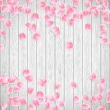 Realistische Sakura-bloemblaadjes op een witte houten achtergrond EPS 10 vector Stock Foto