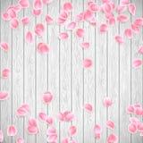 Realistische Sakura-bloemblaadjes op een witte houten achtergrond EPS 10 vector Royalty-vrije Stock Foto